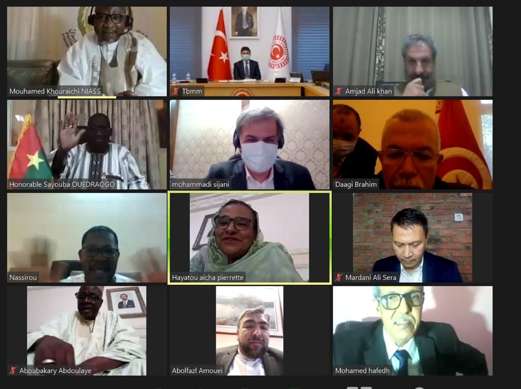 Deuxième Réunion Virtuelle (Webinaire) du Comité Exécutif de l